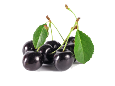 Black Cherry PNG Image