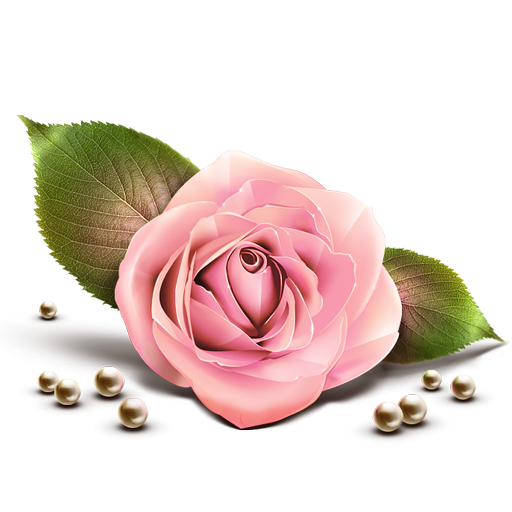 Pink Rose PNG Clipart