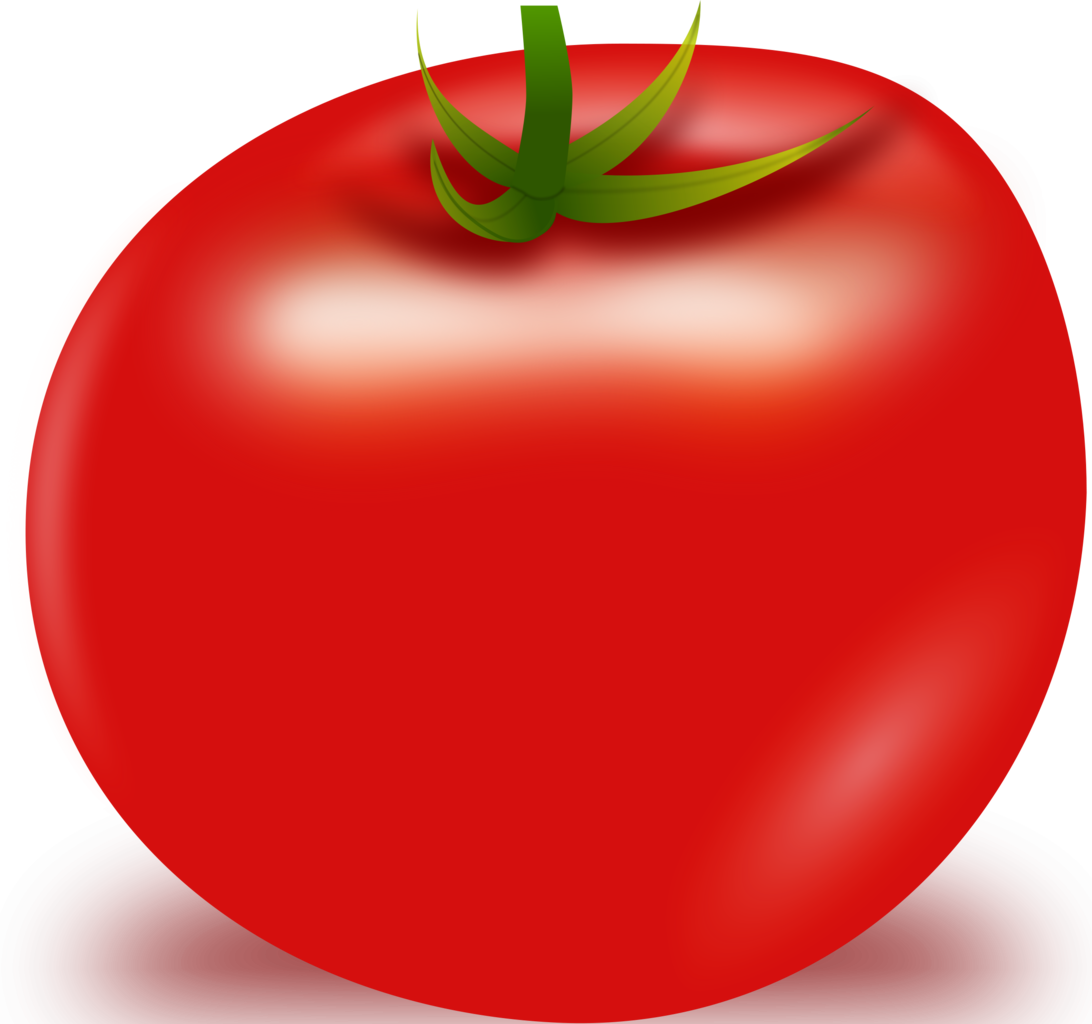 Tomato Vector PNG