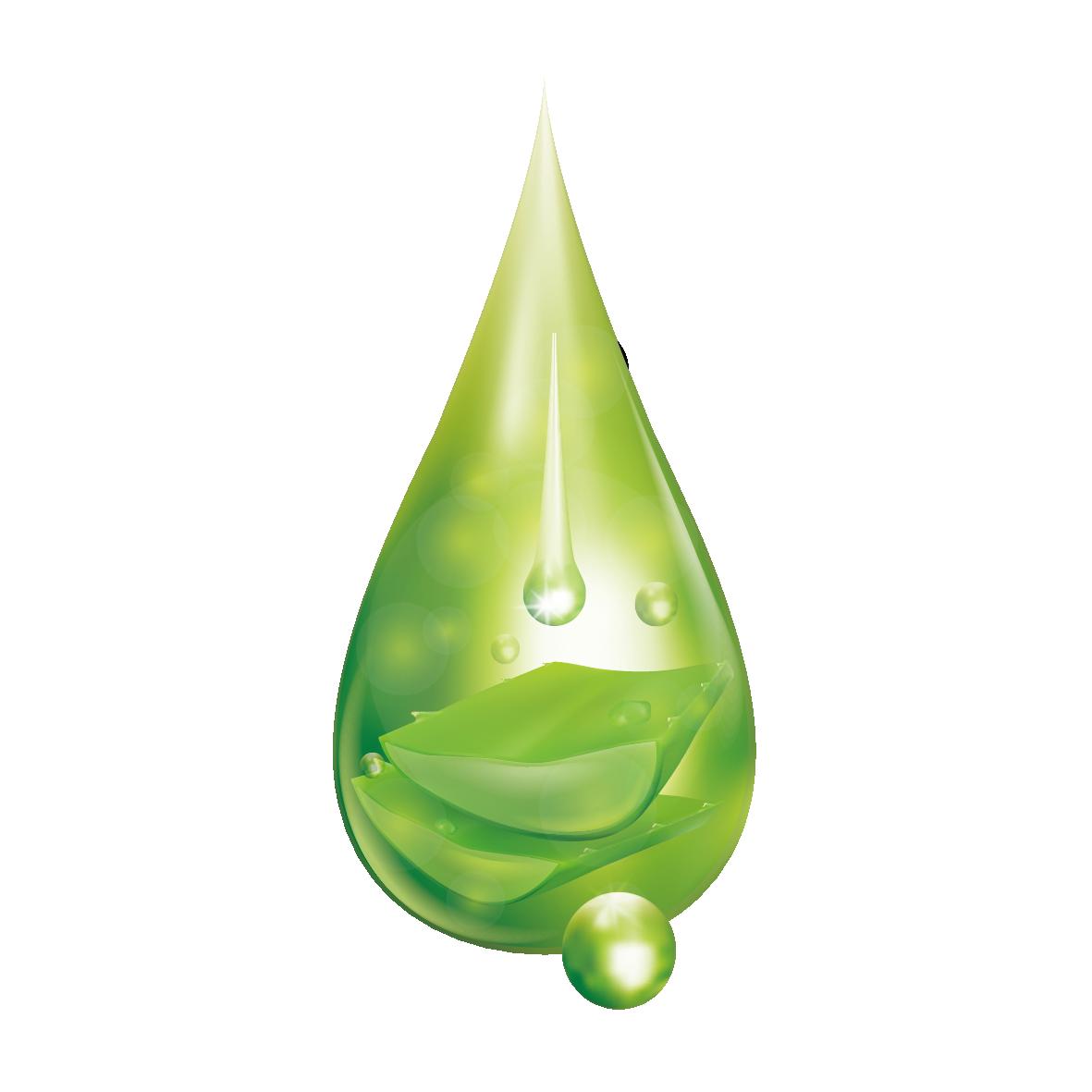 Leaf Water Dew Drop PNG Transparent Image