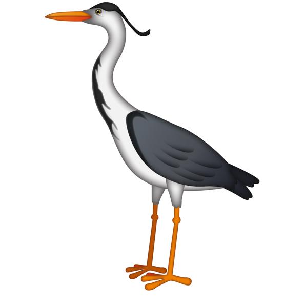 Egret Bird PNG HD