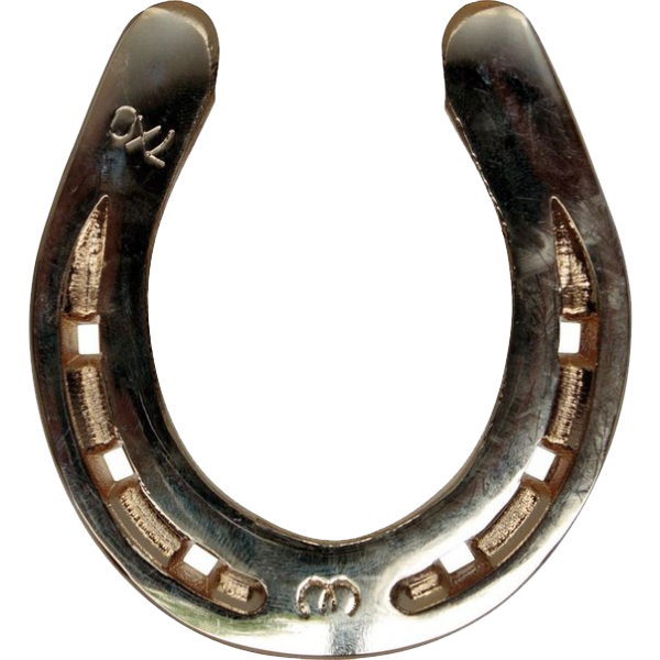 Silver Horseshoe PNG Photos