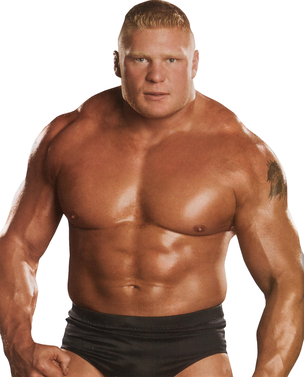 Brock Lesnar PNG Clipart