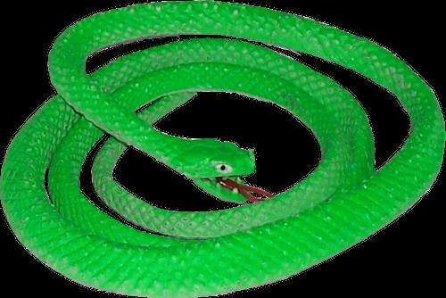 Green Snake PNG Image