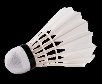 Badminton Birdie PNG Image