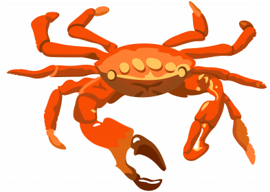 Crab PNG Transparent Image