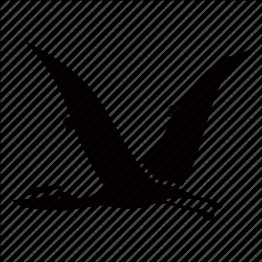 Pterosaurs PNG File