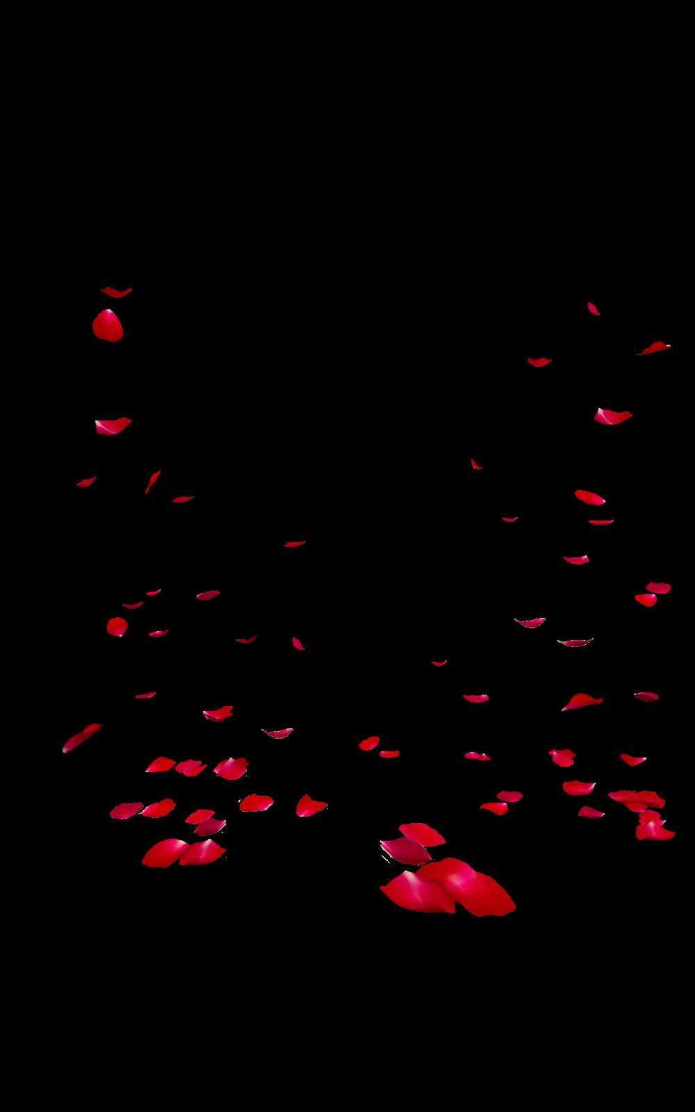 Falling Rose Petals Transparent Images PNG